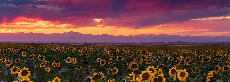 Front Range Colorado Property Management Services